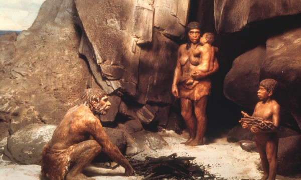 Neanderthal sexuality